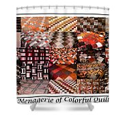 A Menagerie Of Colorful Quilts -  Autumn Colors - Quilter Shower Curtain by Barbara Griffin
