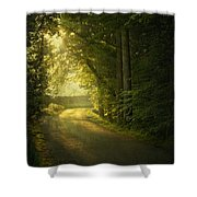 A Path To The Light Shower Curtain by Evelina Kremsdorf