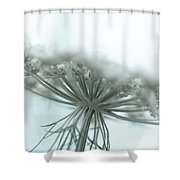 A Place For Us To Dream Shower Curtain by Shane Holsclaw