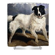 A Portrait Of Neptune Shower Curtain by Sir Edwin Landseer