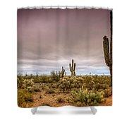 A Rainy Morning Shower Curtain by Saija  Lehtonen