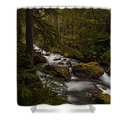 A River Passes Through Shower Curtain by Mike Reid