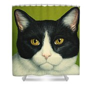 A Serious Cat Shower Curtain by James W Johnson