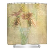 A Vase Of Gerbera Daisies In The Sun Shower Curtain by Diane Schuster