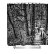 A Walk Through The Woods Shower Curtain by Scott Norris