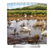 Abbotsbury Swannery Shower Curtain by Joana Kruse