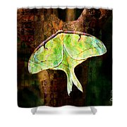 Abstract Luna Moth Painterly Shower Curtain by Andee Design