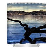 Adrift Reflection Shower Curtain by Cheryl Young