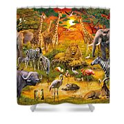 African Harmony Shower Curtain by Jan Patrik Krasny