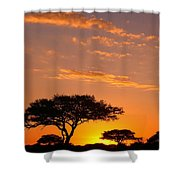 African Sunset Shower Curtain by Sebastian Musial