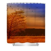 Against The Wind Shower Curtain by Holly Kempe