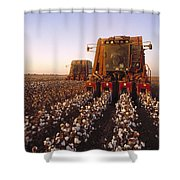 Agriculture - Cotton Harvesting  San Shower Curtain by Ed Young