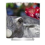 Alabama Football Pachyderm Shower Curtain by Kathy Clark