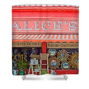 Alice's Antiques Shower Curtain by Georgia Fowler
