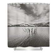 All Together Now Shower Curtain by Laurie Search