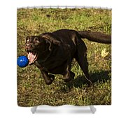Almost Got it Shower Curtain by Jean Noren