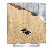 Almost Home Shower Curtain by Sebastian Musial