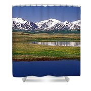 Altay  Shower Curtain by Anonymous