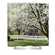 Amish Buggy Fowering Tree Shower Curtain by David Arment