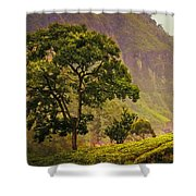 Among The Mountains And Tea Plantations. Nuwara Eliya. Sri Lanka Shower Curtain by Jenny Rainbow
