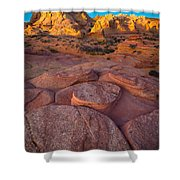 Ancient Seabed Shower Curtain by Inge Johnsson