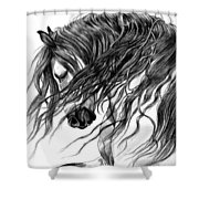 Andalusian Arabian Head Shower Curtain by Cheryl Poland