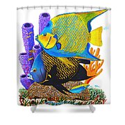 Angel Fish Shower Curtain by Carey Chen