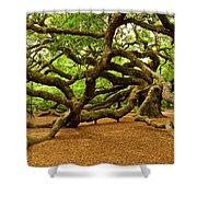 Angel Oak Tree Branches Shower Curtain by Louis Dallara