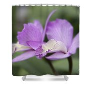 Angels Treasure Hawaii Orchid Shower Curtain by Sharon Mau