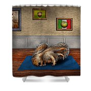 Animal - Squirrel - And Stretch Two Three Four Shower Curtain by Mike Savad