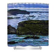Ano Nuevo Seagull Shower Curtain by Blake Richards