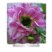 Another Point Of View Shower Curtain by Jeanette C Landstrom