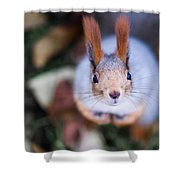 Anyting To Bite - Featured 3 Shower Curtain by Alexander Senin