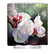 Apricot Flowers Shower Curtain by Irina Sztukowski