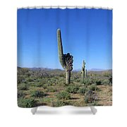 Arizona Is Number One Shower Curtain by Kathy McClure