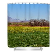 Arizona Spring Shower Curtain by Methune Hively