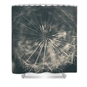 As Long As The Sun Still Shines Shower Curtain by Laurie Search