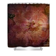 As Time Goes By Shower Curtain by Lianne Schneider