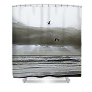 'ascension II' Shower Curtain by Christian Chapman Art