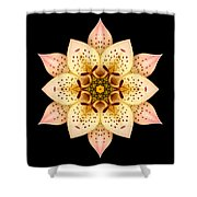 Asiatic Lily Flower Mandala Shower Curtain by David J Bookbinder