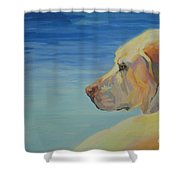 At Peace Shower Curtain by Kimberly Santini
