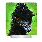 Australian Emu Shower Curtain by Blair Stuart