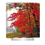 Autumn Along a Country Road Shower Curtain by Terri Gostola