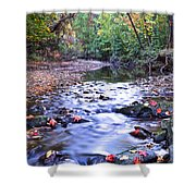 Autumn Begins Shower Curtain by Frozen in Time Fine Art Photography