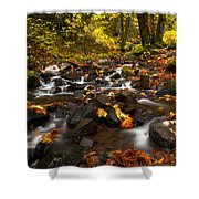 Autumn Breeze Shower Curtain by Mike  Dawson