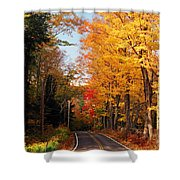 Autumn Country Road Shower Curtain by Joann Vitali