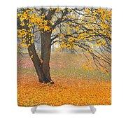 Autumn Fallen Shower Curtain by Terri Gostola