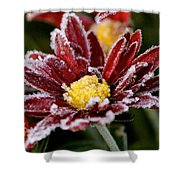 Autumn Frost Shower Curtain by Tiffany Erdman