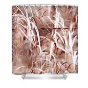 Autumn In The Country Shower Curtain by Angie Rea