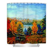 Autumn Landscape Quebec Red Maples And Blue Spruce Trees Shower Curtain by Carole Spandau